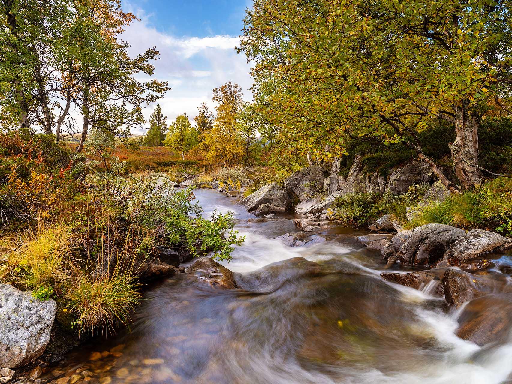 Een prachtige plek in Noorwegen. Wat wil je nog meer? Herfstkleuren en een klein klaterend riviertje. Ik kan hier uren fotograferen en continue nieuwe onderwerpen en composities vinden