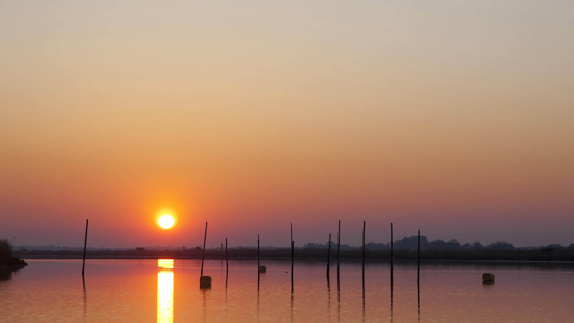 Tijdens een workshop in de Alde Venen varen we met mijn bootje naar de mooiste plekjes in dit prachtige gebied. Ik ken het Nationaal Park op mijn duimpje en laat dit graag zien tijdens een prive vaartocht